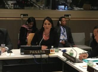 Viceministra Navarro expuso estrategia nacional en materia ambiental ante el PNUD