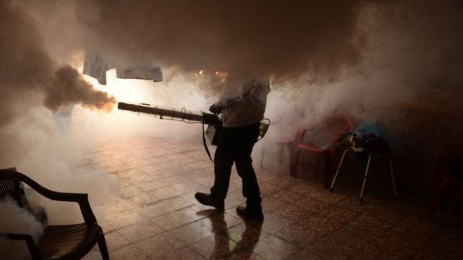OMS informa avances en la lucha contra las Enfermedades Tropicales Desatendidas