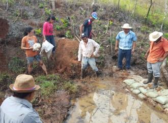 Comunidades de Capira se capacitan para desarrollar Huertas Agroecológicas