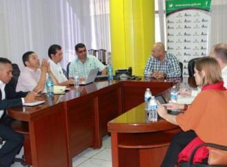Panamá y Holanda realizan conversatorio sobre importación, intercambio de tecnología y logística de la cebolla