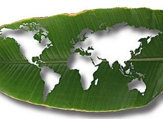 """Por qué la manufactura """"verde"""" es crucial para un futuro con bajas emisiones de carbono"""