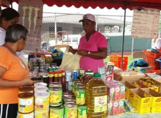 Comunidad de Punta del Este participó en la jornada del Mercadito Verde