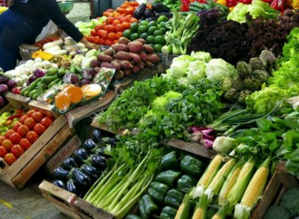 Cadenas Agroalimentarias garantizan la seguridad alimentaria del país