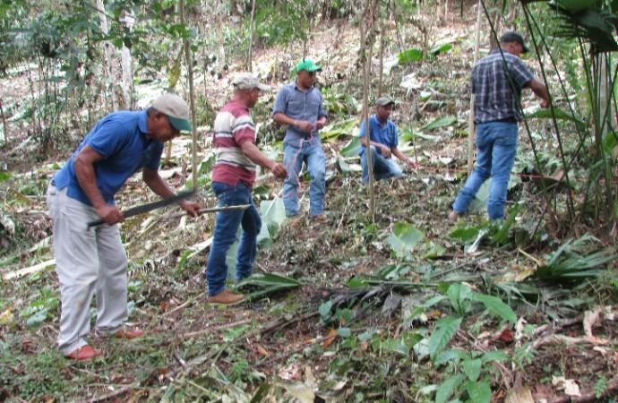 MIDA capacita a productores en Método en Trazado para la Siembra de Café