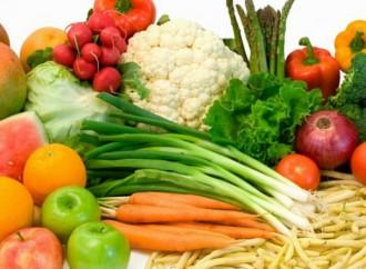 La FAO y la OMS subrayan la importancia de transformar los sistemas alimentarios en todos los sectores