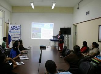 ARAP presentó resultados preliminares del Proyecto sobre Población de Pepinos de Mar en el pacífico panameño