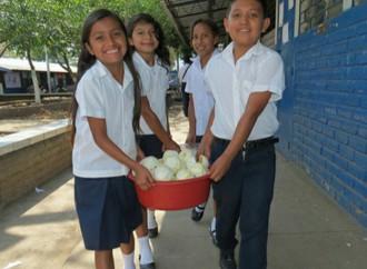 7 formas como las Escuelas pueden contribuir a luchar contra la malnutrición