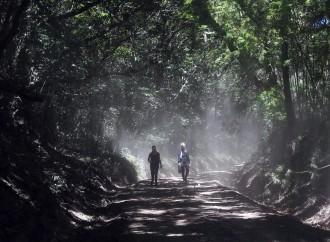 Presidente Varela firma Decretos que potenciarán el turismo verde en Panamá