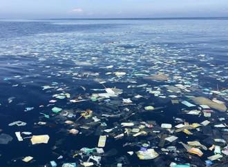 ONU lucha por mantener los océanos limpios de plásticos