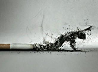OMS exhorta a los gobiernos apliquen medidas firmes de control del tabaco