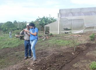 Laboratorio de Biotecnología en Chiriquí impulsará el desarrollo de semillas de alta calidad genética