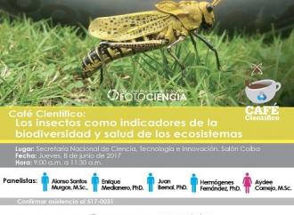 El Café Científico de hoy es sobre Insectos, biodiversidad y ecosistemas