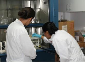 Laboratorios del MIDA fueron certificados con la ISO 9001 sobre gestión de la calidad
