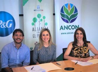 """P&G se une al programa """"Alianza por el Millón"""" para la reforestación de un millón de hectáreas"""