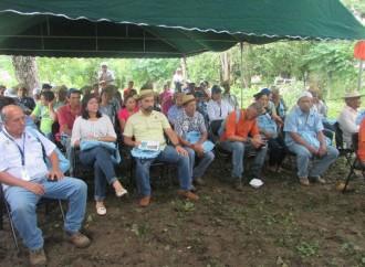 110 productores de café fueron certificados por el MIDA