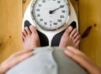 La obesidad un riesgo latente para desarrollar enfermedades cardiovasculares