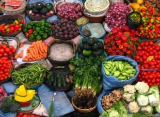 UE y FAO unen filas frente al desperdicio de alimentos y la resistencia a los antimicrobianos