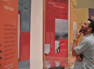 Las aves que viajan por Panamá, una nueva historia en el Biomuseo
