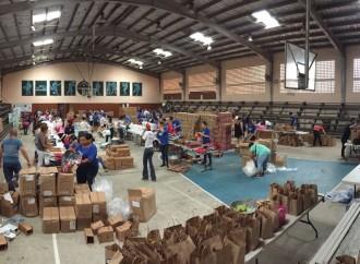 Colaboradores de P&G realizaron jornadas de voluntariado para ayudar a personas afectadas en el Caribe