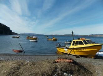 """Argentina estrena nuevo corredor turístico en Tierra del Fuego: """"La Ruta de la Centolla"""""""