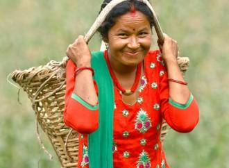 Hoy se celebra el Día Internacional de las Mujeres Rurales priorizando su empoderamiento
