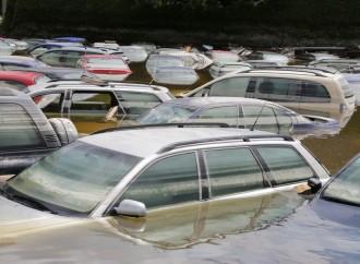 ADAP advierte el riesgo del ingreso al país de carros usado defectuosos