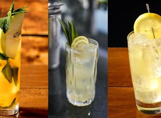 Sorprende a tus invitados con estos tres refrescantes cócteles