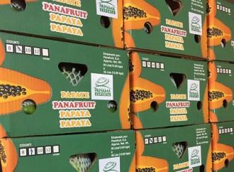 PanaFruit primera empresa en comercializar sus productos bajo el sello Panamá Exporta