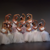 Oportunidad para estudiar danza en laEscuela Nacional de Danza