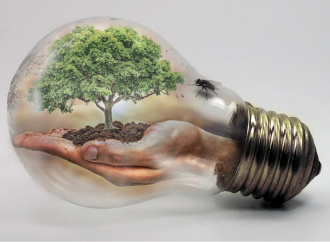 Empresas aceleran la lucha contra el cambio climático