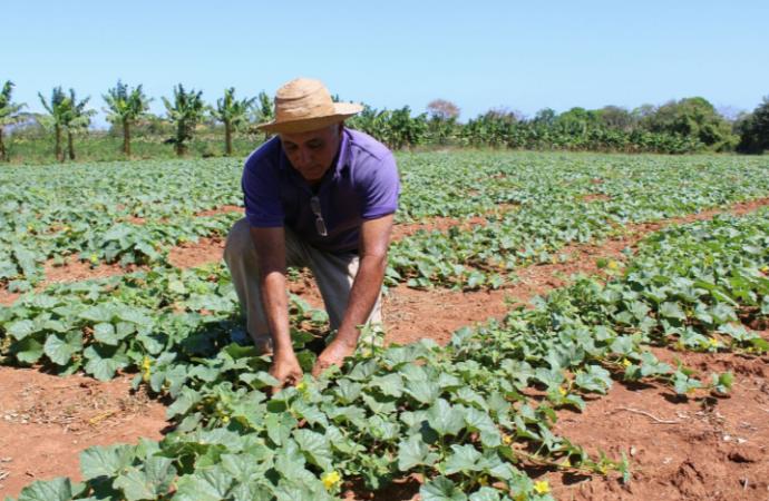Presidente Varela sanciona leyes en apoyo al sector agro del país