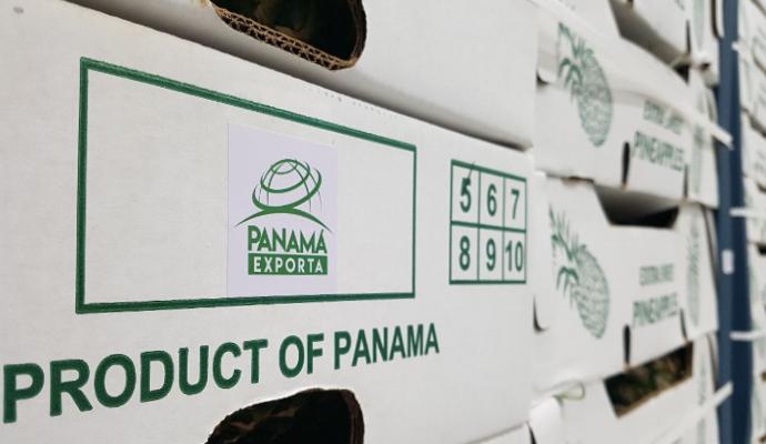"""Empresa Primero Cuarenta Group se suma a """"Panamá Exporta"""" al enviar Piñas a Dubái"""