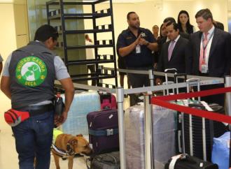 Aeropuerto Internacional de Tocumen incorpora Unidad Canina para la detección de productos agropecuarios