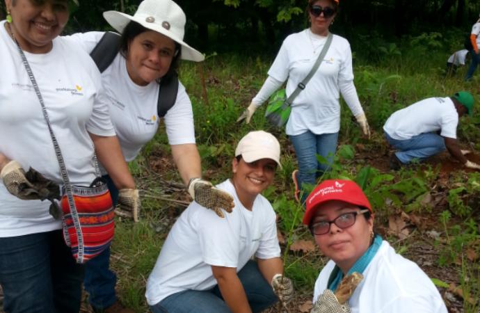 Más de 80 mil árboles sembrados reafirman el compromiso y aporte al medio ambiente