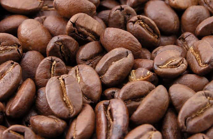 Impacto de la industria del Café en la economía panameña se estimó en B/. 212.2 millones