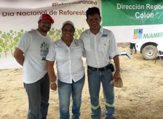 Jinro Corp. se une a la gran jornada de reforestación y refuerza su compromiso con el ambiente en la provincia de Colón