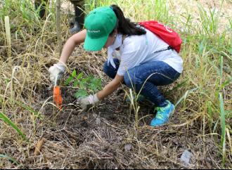 Voluntarios del Sistema Coca-Cola reforestan 1.5 hectáreas en Colón