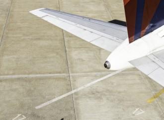 Delta Cargo innovando en seguridad y comodidad para las mascotas