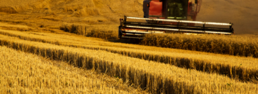 Blockchain revolucionando la agricultura y el suministro de alimentos