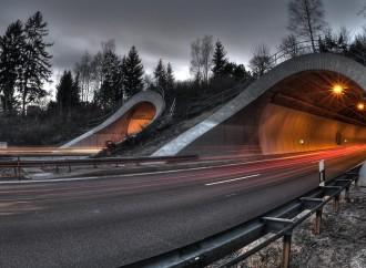 Construcción de túneles mejoraría el tránsito en dos vías de San José, Costa Rica