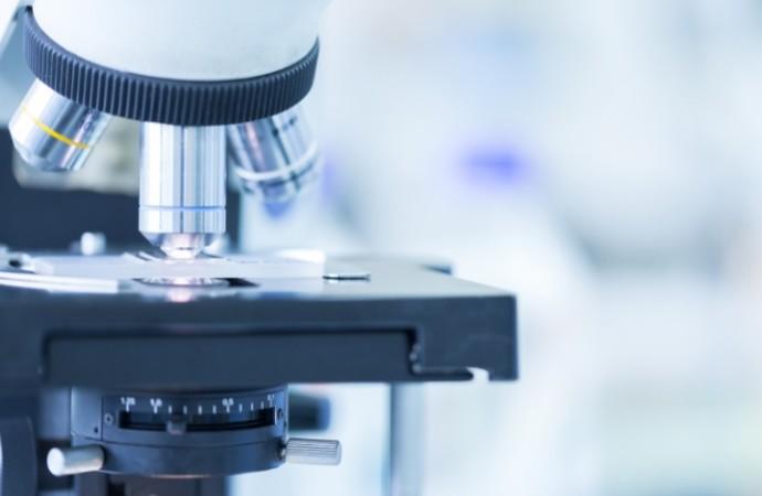 Las vesículas extracelulares podrían ayudar a mejorar las tasas de éxito de la reproducción asistida