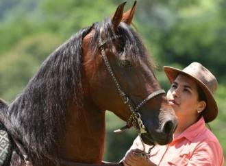 Mujeres profesionales en veterinaria crecieron casi un 240 por ciento