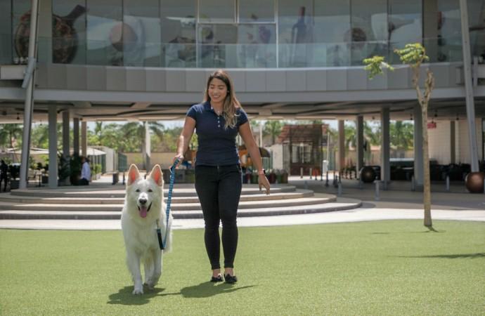 Town Center Costa del Este es oficialmente Pet Friendly