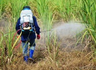 Expertos analizarán impacto del glifosato en la agricultura durante elCongreso Latinoamericano de Malezas 2019