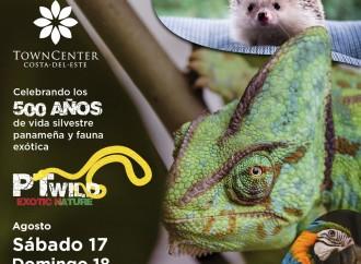Exhibición de vida silvestre panameña y fauna exótica en Town Center Costa del Este
