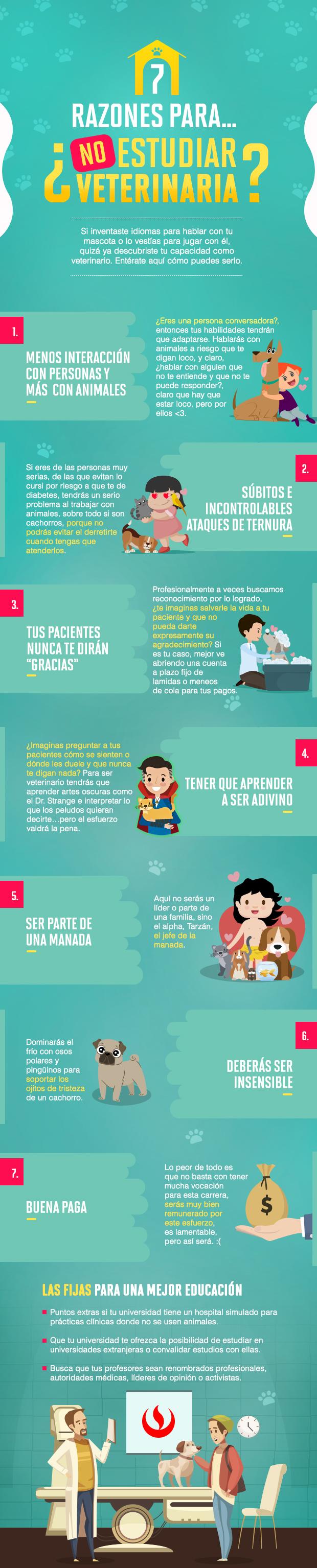 7 razones para estudiar veterinaria