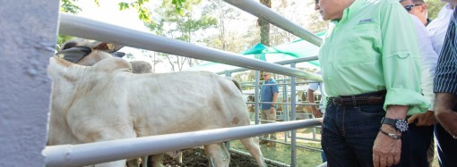 Nuevas acciones para impulsar el Sector Agropecuario aprueba Ejecutivo