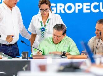 Ejecutivo autoriza inversión de 50 millones para Puerto Armuelles