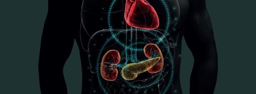 Especialistas impulsan el abordaje multidisciplinario e integral de las enfermedades cardio-renal-metabólicas