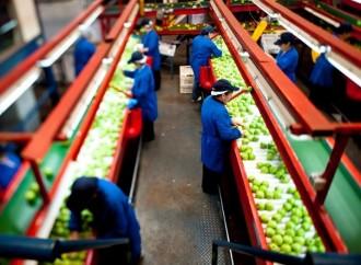 144 importadores participarán en el II e-ncuentro de Negocios Centroamérica & Caribe